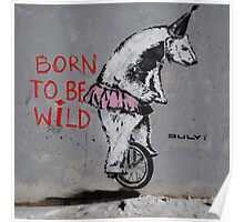 Street Art Born To Be Wild Poster