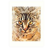 Cat Max Art Print