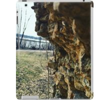 Rock climbing iPad Case/Skin