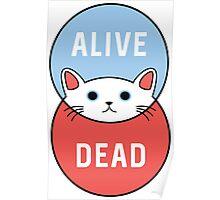 Schrodinger's Cat! Poster