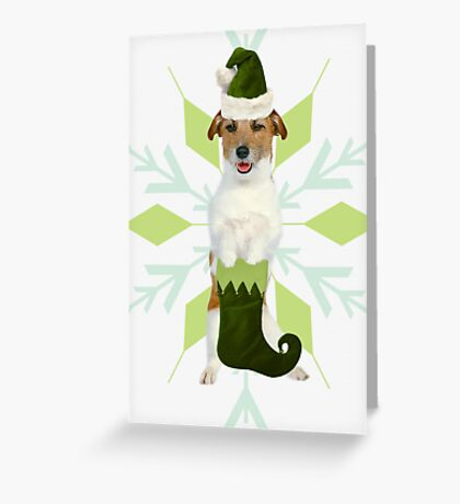 Jack Russell Terrier Holiday Dog Greeting Card