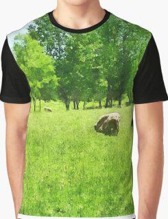 Grazing Sheep Graphic T-Shirt