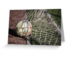 soccer ball in net Greeting Card