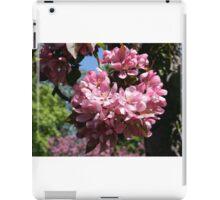 Cherry Tree Blossoms. iPad Case/Skin