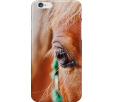 Miniature Brown Horse Filly Eye Golden Mane Teal Bridle iPhone Case/Skin