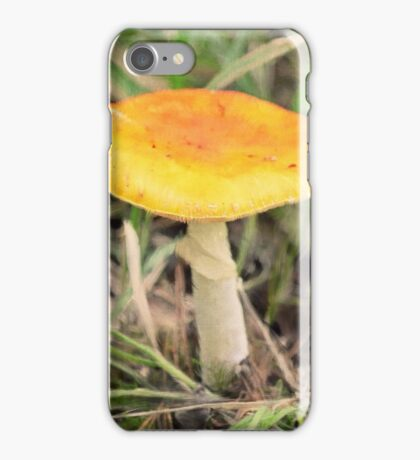 Painting forests iPhone Case/Skin