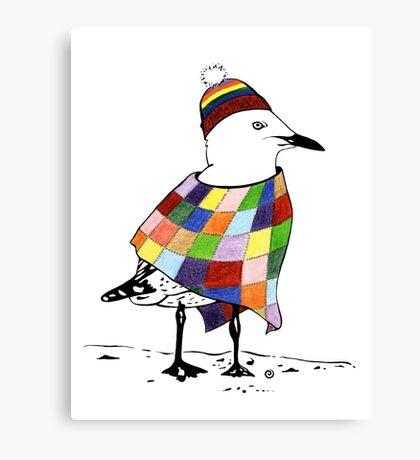 Chilli the Seagull Canvas Print