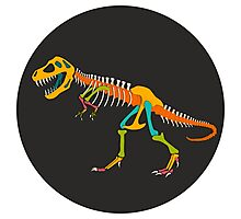 Tyrannosaurus Rex Skeleton Photographic Print