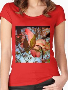 Backlit Dogwood Women's Fitted Scoop T-Shirt