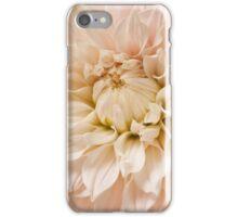 Pink Dahlia Blossom Flower Background iPhone Case/Skin