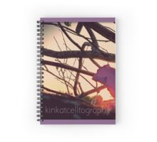 Pointing At Sun Spiral Notebook