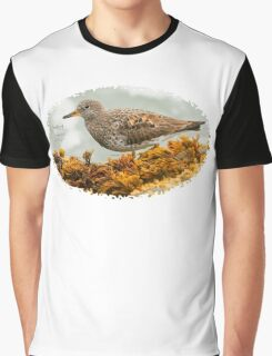 Bird Book Apparel - Surfbird Graphic T-Shirt