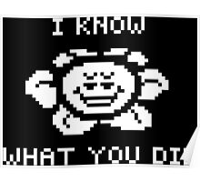 Flowey knows what you did Poster