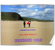 Challenge Winner Banner - Home Page Vets Poster