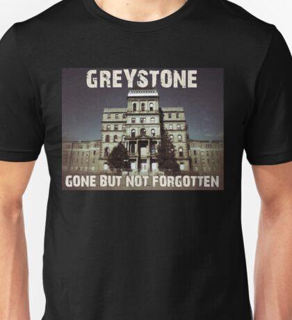 Greystone 2 Unisex T-Shirt