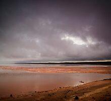 The Pink Lake by David J Baster