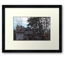 In the Day Framed Print