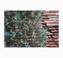 Green and Red - Cypress Branches Over Antique Roman Brick Wall One Piece - Long Sleeve