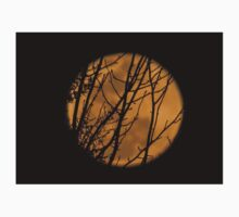 Full moon though the branches Baby Tee