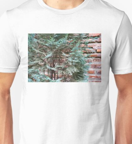 Green and Red - Slender Cypress Branches Over Rough Roman Brick Wall Unisex T-Shirt