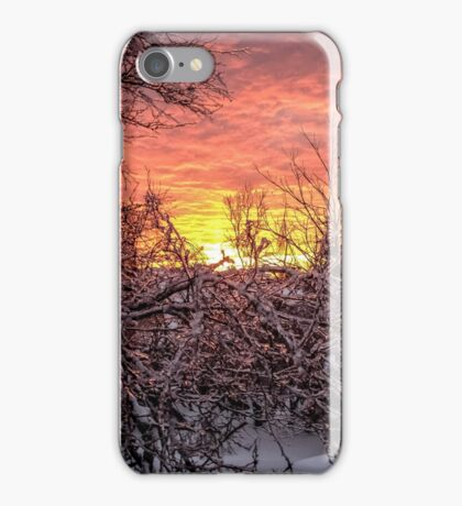 Glass Branches Touch The Morning Rise iPhone Case/Skin