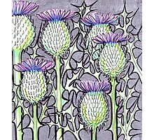 Inked Thistles Photographic Print