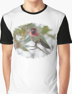 Bird Book Apparel - Anna's Hummingbird ♂ Graphic T-Shirt
