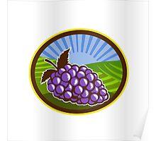 Grapes Vineyard Farm Oval Woodcut Poster