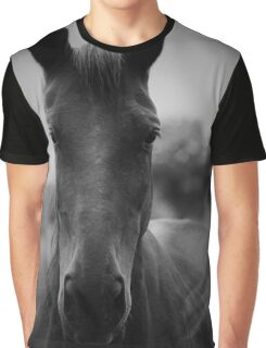 Black and White Horse Graphic T-Shirt