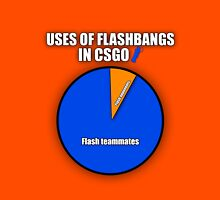 Uses Of CSGO Flashbangs Unisex T-Shirt