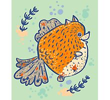 Pomfish Photographic Print