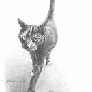 tortoiseshell kitty drawing by Mike Theuer
