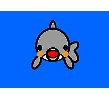 Cute dolphin Photographic Print