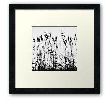 Water Reeds Framed Print