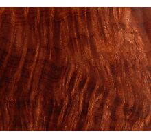 Beautiful Unique mahogany red wood veneer design Photographic Print