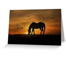 Grazing Horse and Birds in Sunrise Greeting Card