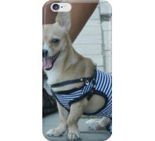 Nice dog iPhone Case/Skin