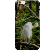 Great White Egret Pruning iPhone Case/Skin