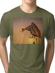 Pelican Tri-blend T-Shirt