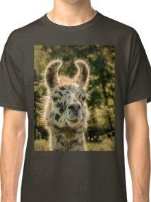 Llama Classic T-Shirt
