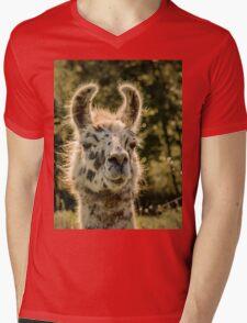 Llama Mens V-Neck T-Shirt