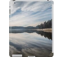 Forstsee iPad Case/Skin