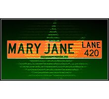 Mary Jane Lane 420 Photographic Print