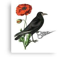 Crow & Scissors  Canvas Print