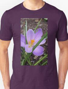 Lavender Crocus Unisex T-Shirt