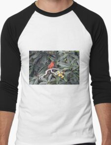 Cardinal in a Fruit Tree Men's Baseball ¾ T-Shirt