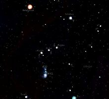 Constellation -- Orion by Audrey Dijeau