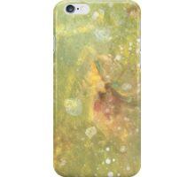 Lime Stone iPhone Case/Skin