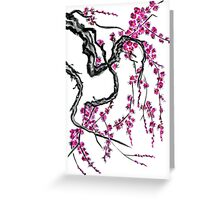 Pink flowers of sakura Greeting Card