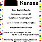 Kansas Information Educational by ValeriesGallery